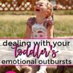3 year old emotional outburst