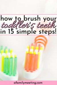 green and orange toothbrushes for toddler teeth brushing and how to brush your toddlers teeth